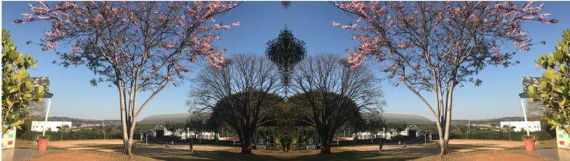 Através do Software Geogebra e com fotos de própria autoria...