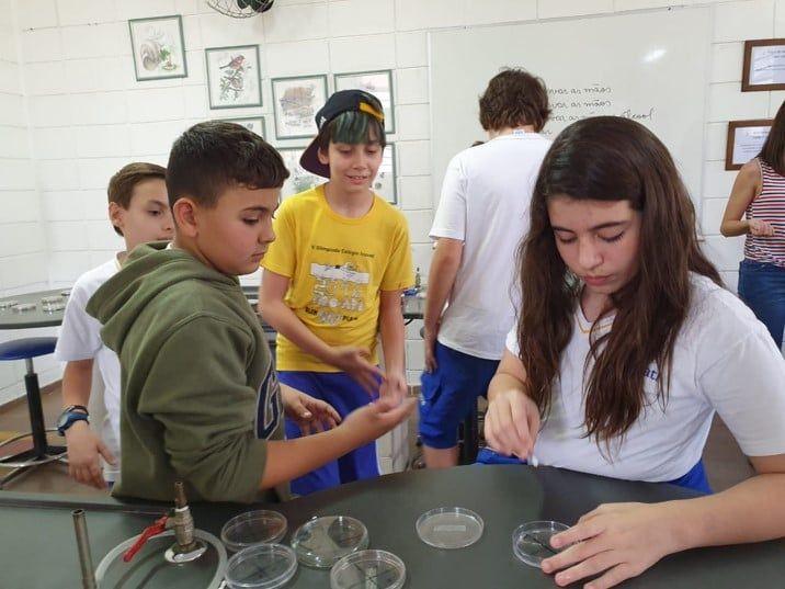 Projeto sobre Microrganismos e Saúde